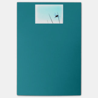 Dragonfly Teal Post-it Notes