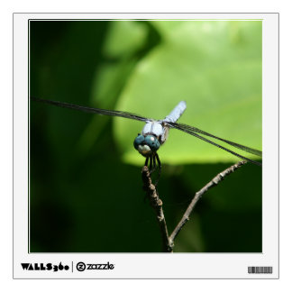 Dragonfly, Wall Decal. Wall Decal