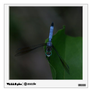 Dragonfly, Wall Decal. Wall Sticker