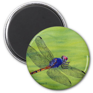 Dragonfly watercolor painting magnet