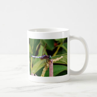 Dragonfly with white flowers coffee mugs