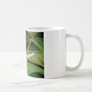 Dragonfly with white flowers mug