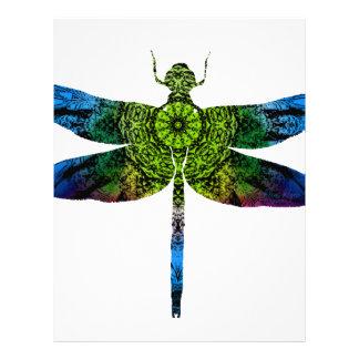 dragonflyk52017 letterhead