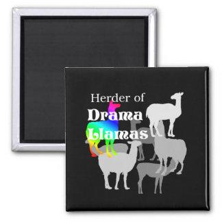 Drama Llama Herder Magnet