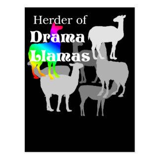 Drama Llama Herder Postcard