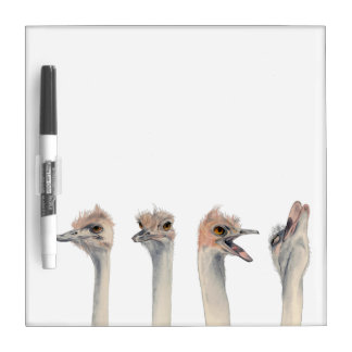 """""""Drama Queen"""" Funny Ostriches Painting Dry Erase Board"""