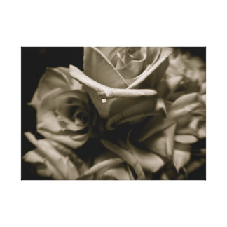 Dramatic black and white roses canvas print