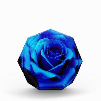 Dramatic Blue Rose Photo Block