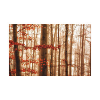 Dramatic red foggy winter snowless forest canvas print