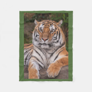 Dramatic Resting Tiger Fleece Blanket