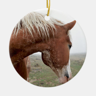 Draught   Horse in the Mist - Stunning Western Round Ceramic Ornament