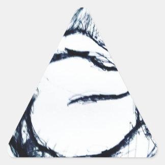 Draw for Today Triangle Sticker