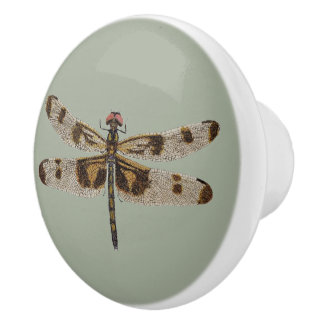 The Dragonfly Knobs And Pulls Custom Cabinet Hardware