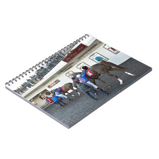 Drawing Away Stables Spiral Notebook