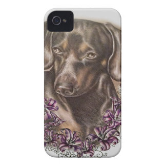 Drawing of Brown Dachshund Dog and Lilies Art iPhone 4 Cover