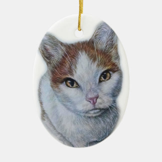 Drawing of Cat White and Orange Ceramic Ornament