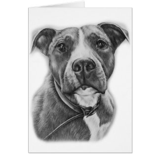 Drawing of Pit Bull Dog Animal Art Card