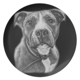 Drawing of Pit Bull Dog Animal Art Plate