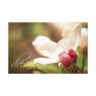 Dream a little dream - Apple Blossom- Canvas Art