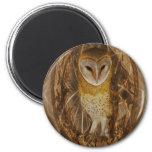 Dream catcher owl refrigerator magnets
