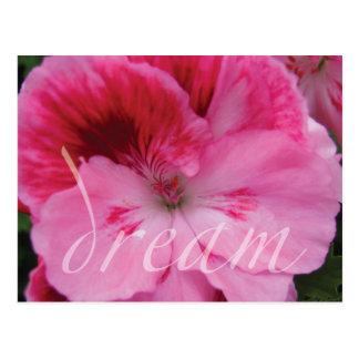 Dream Pink Geranium Flower postcard