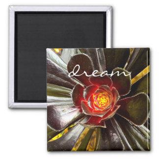 """""""Dream"""" quote giant orange and black cactus photo Magnet"""