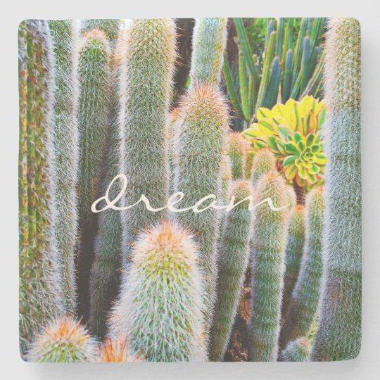 """Dream"" Quote Orange and Green Fuzzy Cacti Photo Stone Coaster"