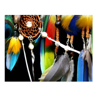 Dreamcatcher and Feathers Postcard