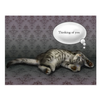 Dreaming kitty, customizable text card postcard