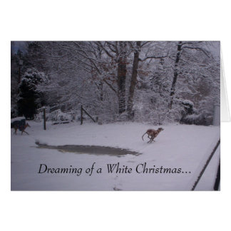 Dreaming of a White Christmas... Card