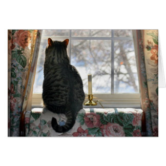 Dreaming of a White Christmas - Cat at Window Card