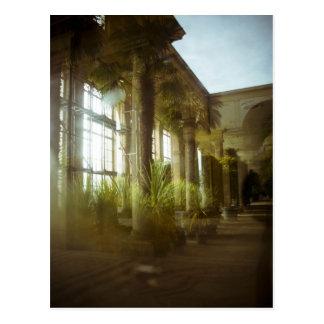Dreaming of Arcadia Postcard