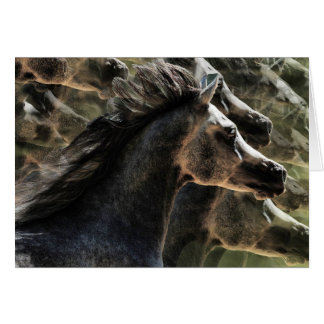 Dreaming of horses card