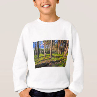 Dreaming Pine Trees into the Evening Light Sweatshirt