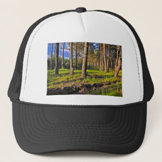 Dreaming Pine Trees into the Evening Light Trucker Hat