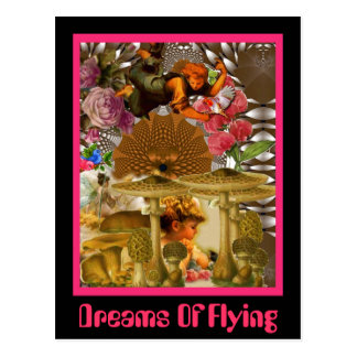 Dreams Of Flying Postcard