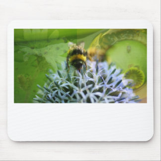 Dreams of the bee mouse pad