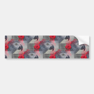 Dreamy African Grey with Red Roses Bumper Sticker