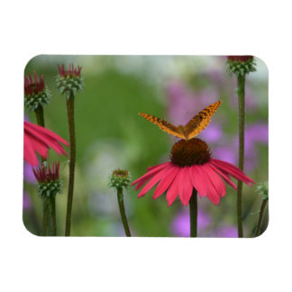 Dreamy Butterfly On Coneflower Rectangular Photo Magnet