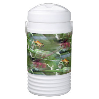 Dreamy Damselfly Dragonfly Igloo Beverage Cooler