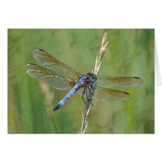 Dreamy Dragonfly Card