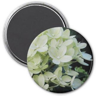 Dreamy Hydrangea Floral Magnet