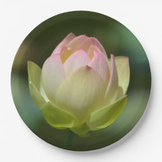 Dreamy Lotus Blossom 9 Inch Paper Plate