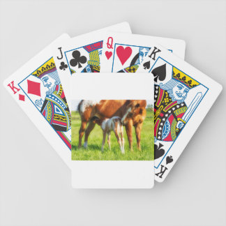 Dreamy, new horse foal with Mama Bicycle Playing Cards
