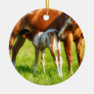 Dreamy, new horse foal with Mama Ceramic Ornament