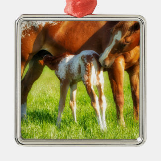 Dreamy, new horse foal with Mama Metal Ornament
