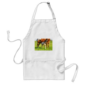 Dreamy, new horse foal with Mama Standard Apron