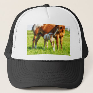 Dreamy, new horse foal with Mama Trucker Hat