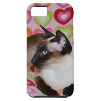 Dreamy Siamese Cat Hearts iPhone 5 Case