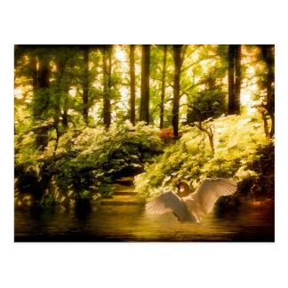 Dreamy Swan Postcard